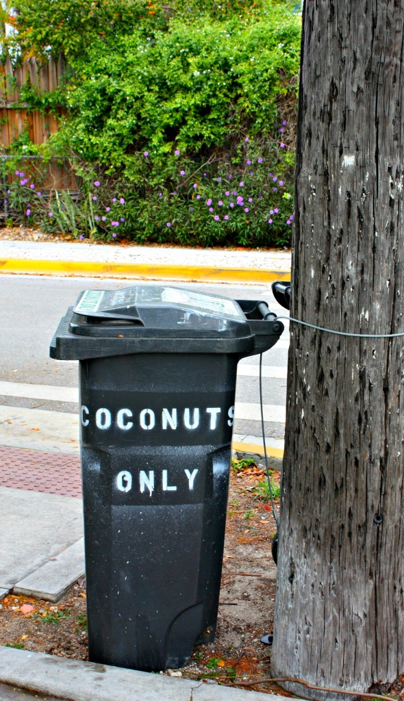 coconutsonly
